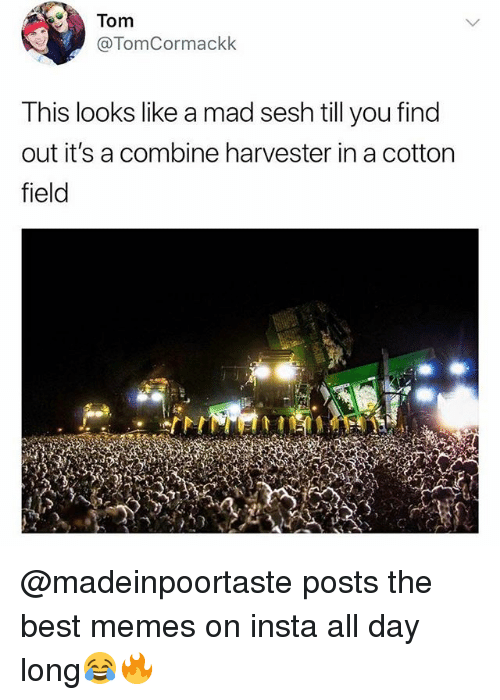 Memes, Best, and British: @TomCormackk  This looks like a mad sesh till you find  out it's a combine harvester in a cotton  field @madeinpoortaste posts the best memes on insta all day long😂🔥