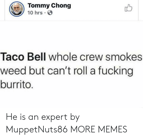 Taco Bell: Tommy Chong  10 hrs  Taco Bell whole crew smokes  weed but can't roll a fucking  burrito. He is an expert by MuppetNuts86 MORE MEMES
