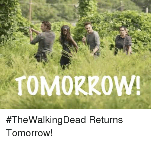 Memes and 🤖: TOMORROW! #TheWalkingDead Returns Tomorrow!