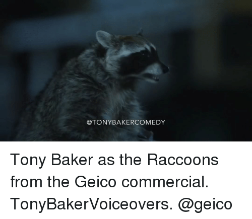 25 best memes about geico commercial geico commercial memes