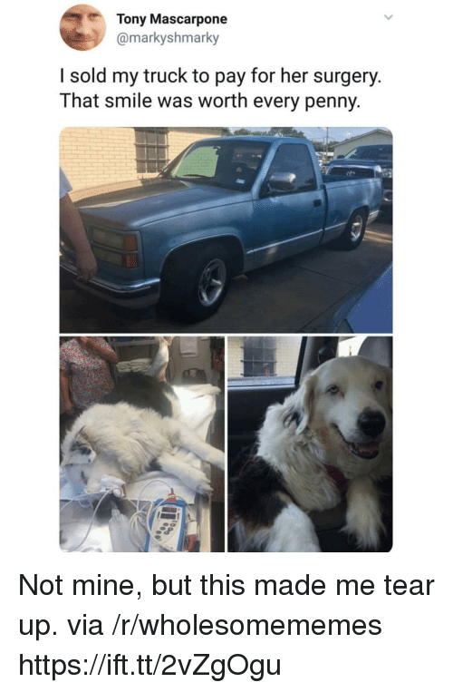 Smile, Her, and Mine: Tony Mascarpone  @markyshmarky  I sold my truck to pay for her surgery.  That smile was worth every penny Not mine, but this made me tear up. via /r/wholesomememes https://ift.tt/2vZgOgu