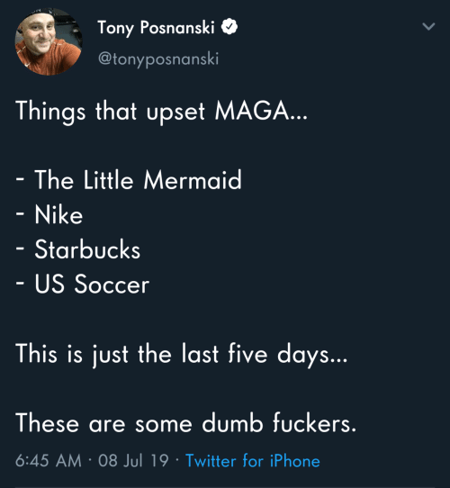 The Little Mermaid: Tony Posnanski  @tonyposnanski  Things that upset MAGA...  - The Little Mermaid  - Nike  Starbucks  - US Soccer  This is just the last five days...  These are some dumb fuckers.  6:45 AM 08 Jul 19 Twitter for iPhone