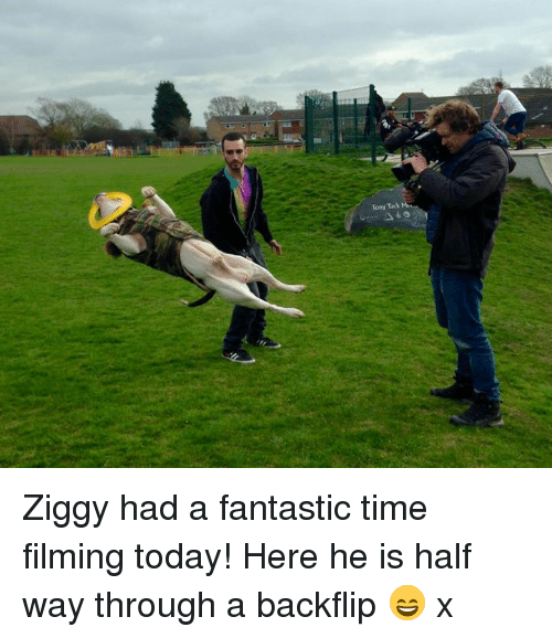 tacks: Tony Tack Ziggy had a fantastic time filming today! Here he is half way through a backflip 😄 x