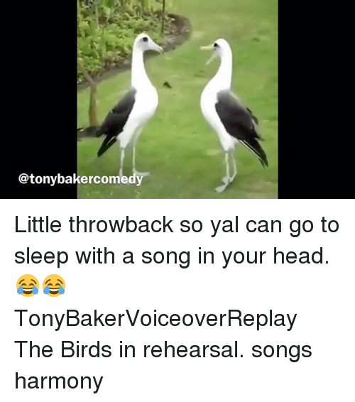Go to Sleep, Head, and Memes: @tonybakercom Little throwback so yal can go to sleep with a song in your head. 😂😂 TonyBakerVoiceoverReplay The Birds in rehearsal. songs harmony