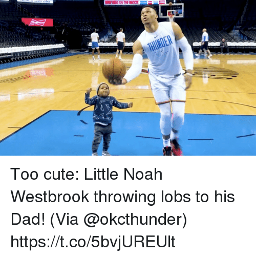 westbrook: Too cute: Little Noah Westbrook throwing lobs to his Dad!   (Via @okcthunder)  https://t.co/5bvjUREUlt