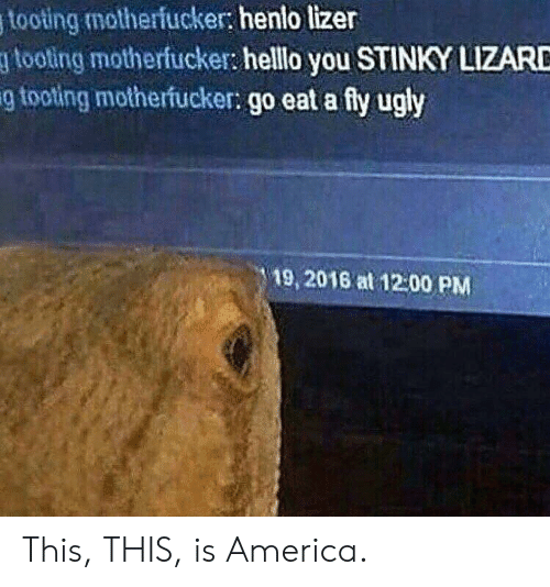 Stinky Lizard: tooting motherfucker: henlo lizer  gtooting motherfucker: helllo you STINKY LIZARD  g tooting motherfucker: go eat a fy ugly  19, 2016 at 12:00 PM This, THIS, is America.