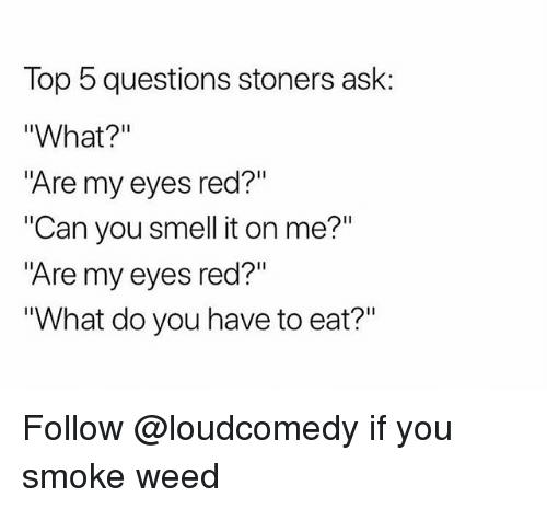 """Smell, Weed, and Trendy: Top 5 questions stoners ask:  """"What?""""  """"Are my eyes red?""""  """"Can you smell it on me?""""  """"Are my eyes red?""""  What do you have to eat?"""" Follow @loudcomedy if you smoke weed"""