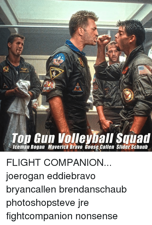 Top Gun Volleyball Squad Iceman Rogan Maverick Bravo Goose ...