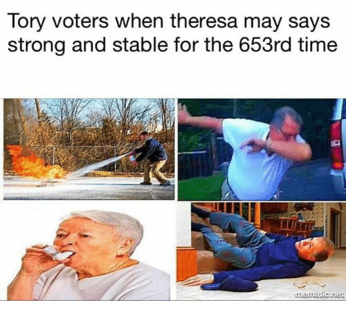 Memes, Time, and Strong: Tory voters when theresa may says  strong and stable for the 653rd time  Mematic net