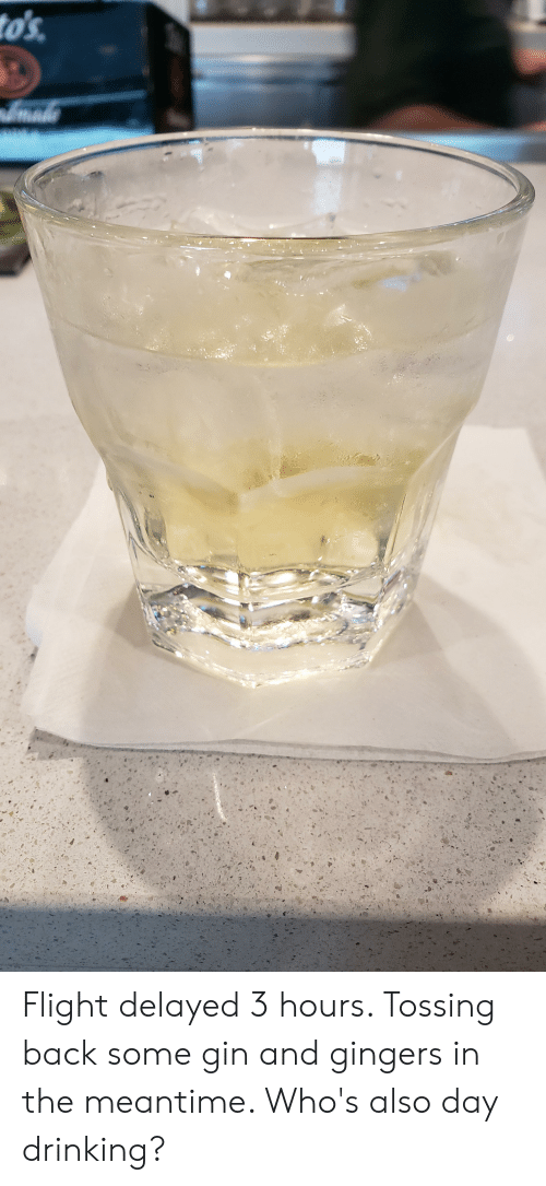 Flight Delayed: to's  mado Flight delayed 3 hours. Tossing back some gin and gingers in the meantime. Who's also day drinking?