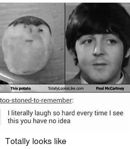 Paul McCartney: TotalyLooksuko com Paul McCartney  This potato  too-stoned-to-remember:  I literally laugh so hard every time I see  this you have no idea Totally looks like