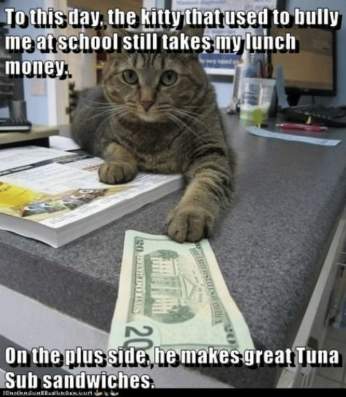 Money, Bully, and Tuna: Tothis day, the kittythat used to bully  me atschool still takesmylunch  money  On the plus side he makes great Tuna  Sub sandwiches  W3RETLAUSEATESEWH  20  g0 ENILDOTARS
