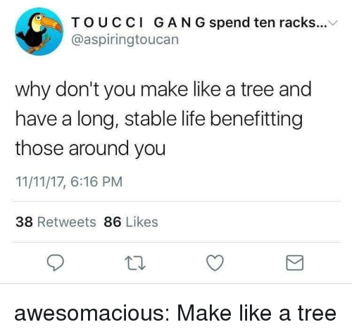Life, Tumblr, and Blog: TOUCCI GAN G spend ten racks...V  @aspiringtoucan  why don't you make like a tree and  have a long, stable life benefitting  those around you  11/11/17, 6:16 PM  38 Retweets 86 Likes awesomacious:  Make like a tree