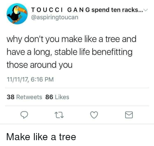 racks: TOUCCI GAN G spend ten racks...V  @aspiringtoucan  why don't you make like a tree and  have a long, stable life benefitting  those around you  11/11/17, 6:16 PM  38 Retweets 86 Likes Make like a tree