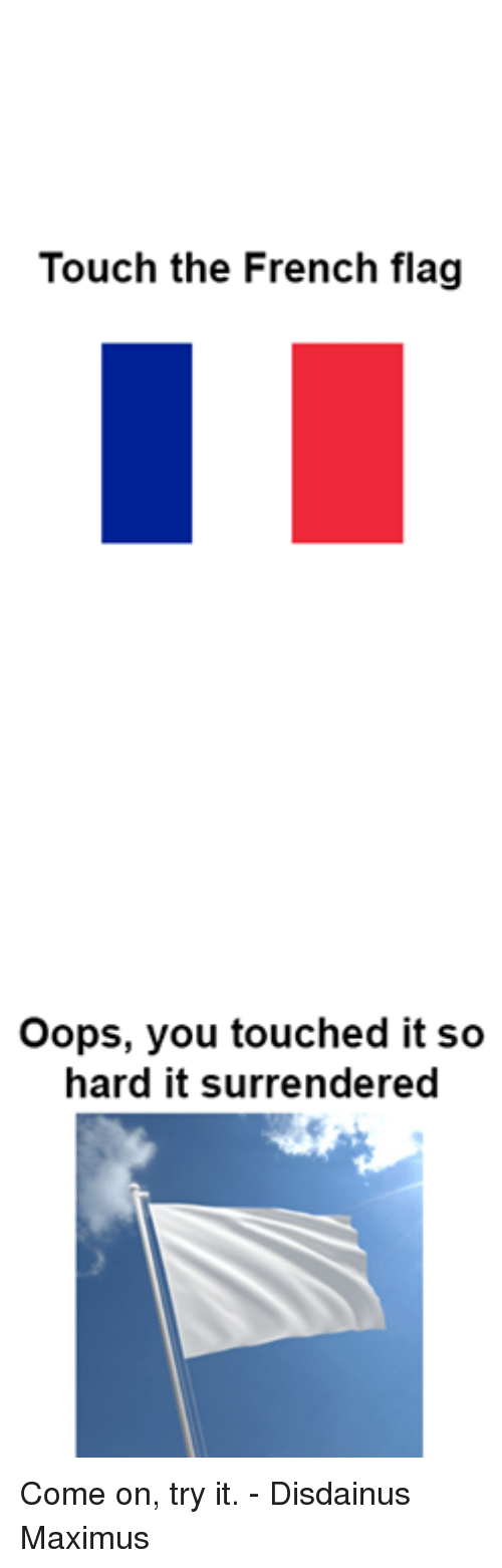 french flag: Touch the French flag  Oops, you touched it so  hard it surrendered Come on, try it.  - Disdainus Maximus