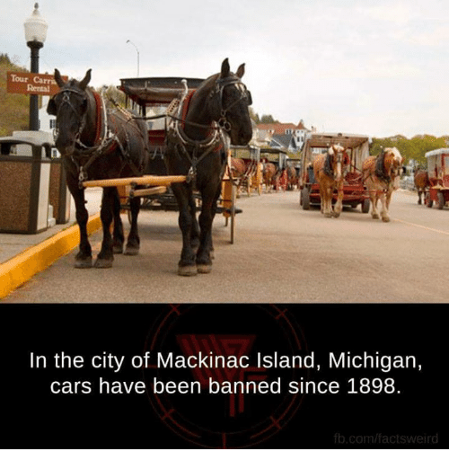 fb.com: Tour Carri  In the city of Mackinac Island, Michigan,  cars have been banned since 1898.  fb.com/facts weird