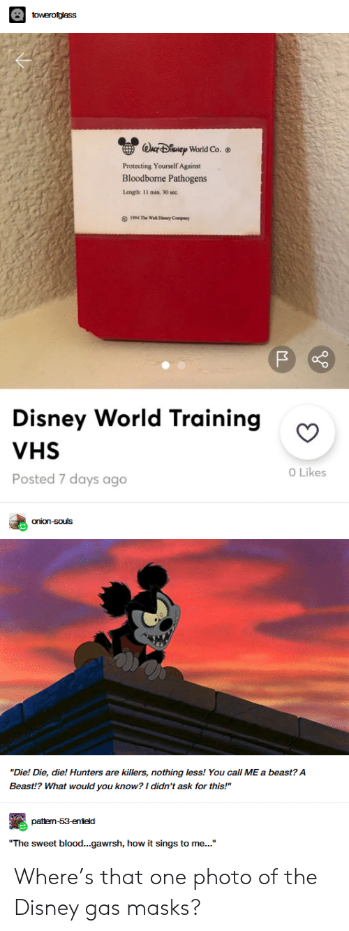 """vhs: towerofglass  WACF DENEP World Co.  Protecting Yourself Against  Bloodborne Pathogens  Length: 11 min. 30 sec  1994 The Wah Diney Company  Disney World Training  VHS  O Likes  Posted 7 days ago  onion-souls  """"Die! Die, die! Hunters are killers, nothing less! You call ME a beast? A  Beast!? What would you know? I didn't ask for this!""""  pattem-53-enield  """"The sweet blood...gawrsh, how it sings to me..."""" Where's that one photo of the Disney gas masks?"""
