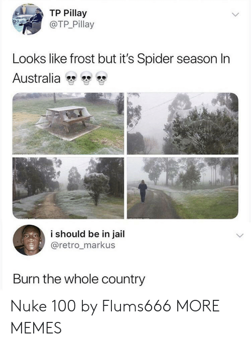 nuke: TP Pillay  @TP Pillay  Looks like frost but it's Spider season In  Australia  i should be in jail  @retro_markus  Burn the whole country Nuke 100 by Flums666 MORE MEMES