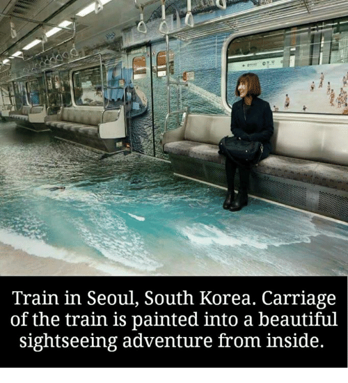Memes, 🤖, and Korea: Train in Seoul, South Korea. Carriage  of the train is painted into a beautiful  sightseeing adventure from inside.