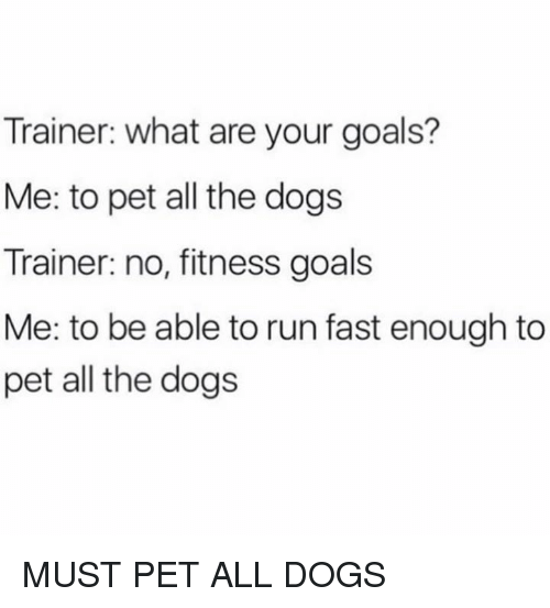 Running Fast: Trainer: what are your goals?  Me: to pet all the dogs  Trainer: no, fitness goals  Me: to be able to run fast enough to  pet all the dogs MUST PET ALL DOGS