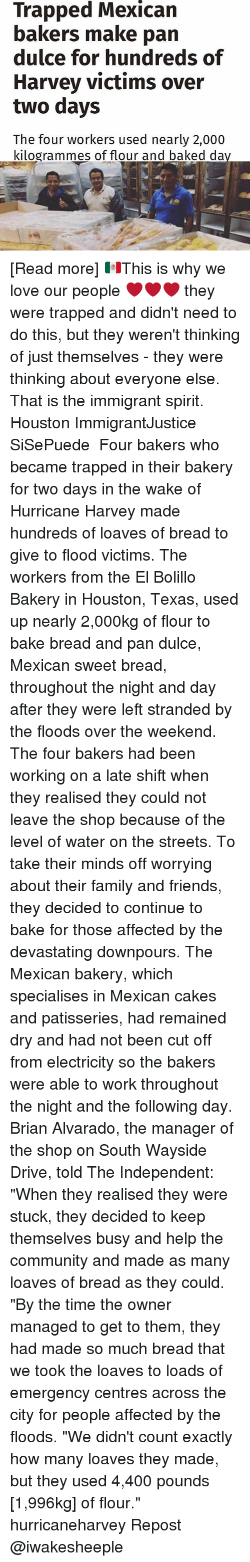 """houston texas: Trapped Mexican  bakers make pan  dulce for hundreds of  Harvey victims over  two days  The four workers used nearly 2,000  kilogrammes of flour and baked da [Read more] 🇲🇽This is why we love our people ❤❤❤ they were trapped and didn't need to do this, but they weren't thinking of just themselves - they were thinking about everyone else. That is the immigrant spirit. Houston ImmigrantJustice SiSePuede ・・・ Four bakers who became trapped in their bakery for two days in the wake of Hurricane Harvey made hundreds of loaves of bread to give to flood victims. The workers from the El Bolillo Bakery in Houston, Texas, used up nearly 2,000kg of flour to bake bread and pan dulce, Mexican sweet bread, throughout the night and day after they were left stranded by the floods over the weekend. The four bakers had been working on a late shift when they realised they could not leave the shop because of the level of water on the streets. To take their minds off worrying about their family and friends, they decided to continue to bake for those affected by the devastating downpours. The Mexican bakery, which specialises in Mexican cakes and patisseries, had remained dry and had not been cut off from electricity so the bakers were able to work throughout the night and the following day. Brian Alvarado, the manager of the shop on South Wayside Drive, told The Independent: """"When they realised they were stuck, they decided to keep themselves busy and help the community and made as many loaves of bread as they could. """"By the time the owner managed to get to them, they had made so much bread that we took the loaves to loads of emergency centres across the city for people affected by the floods. """"We didn't count exactly how many loaves they made, but they used 4,400 pounds [1,996kg] of flour."""" hurricaneharvey Repost @iwakesheeple"""