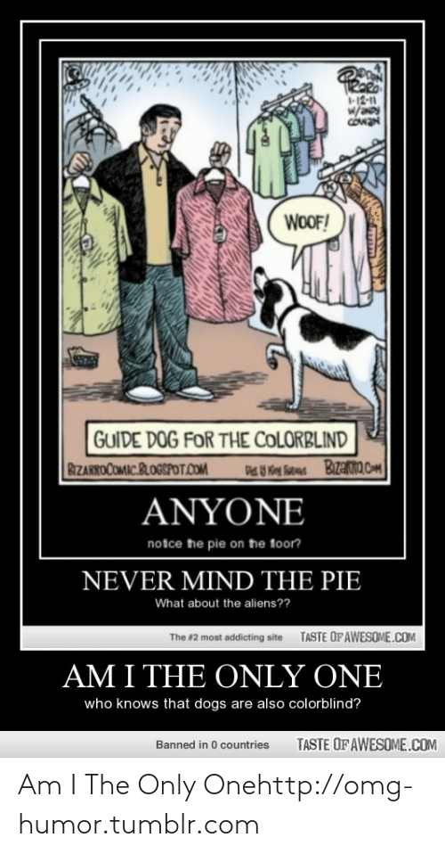 Dogs: TRARO  12-11  w/  COwaN  WOOF!  GUIDE DOG FOR THE COLORBLIND  BIZARROCOMIC.BLOGSPOT.COM  Bizako.com  U Keg Tutes  ΑNΥΟΝE  notce the pie on the foor?  NEVER MIND THE PIE  What about the aliens??  TASTE OFAWESOME.COM  The #2 most addicting site  AM I THE ONLY ONE  who knows that dogs are also colorblind?  TASTE OF AWESOME.COM  Banned in 0 countries Am I The Only Onehttp://omg-humor.tumblr.com