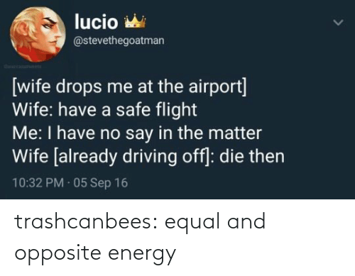 Energy: trashcanbees:  equal and opposite energy
