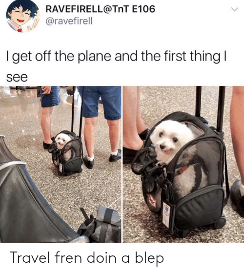 Travel, Style, and Blep: Travel fren doin a blep