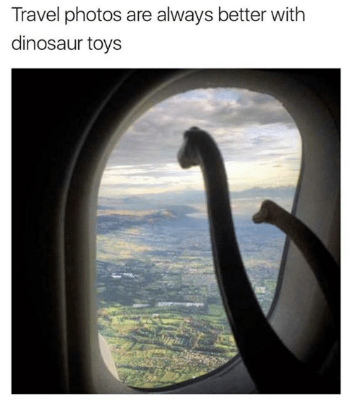 dinosaure: Travel photos are always better with  dinosaur toys