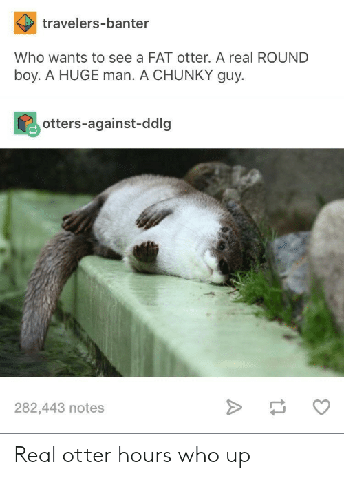 Bilbo, Otters, and Fat: travelers-banter  Who wants to see a FAT otter. A real ROUND  boy. A HUGE man. A CHUNKY guy.  otters-against-ddlg  282,443 notes Real otter hours who up