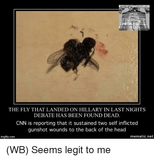 Seems Legit To Me: TRE  THE FLY THAT LANDED ON HILLARY IN LAST NIGHTS  DEBATE HAS BEEN FOUND DEAD.  CNN is reporting that it sustained two self inflicted  gunshot wounds to the back of the head  me matic net  imgflip.com (WB) Seems legit to me
