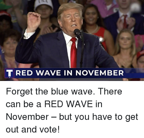 get-out-and-vote: TRED WAVE IN NOVEMBER Forget the blue wave. There can be a RED WAVE in November – but you have to get out and vote!