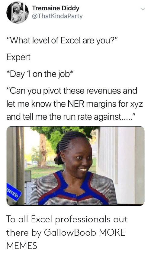 "xyz: Tremaine Diddy  @ThatKindaParty  ""What level of Excel are you?""  Expert  *Day 1 on the job*  ""Can you pivot these revenues and  let me know the NER margins for xyz  and tell me the run rate against...."" To all Excel professionals out there by GallowBoob MORE MEMES"