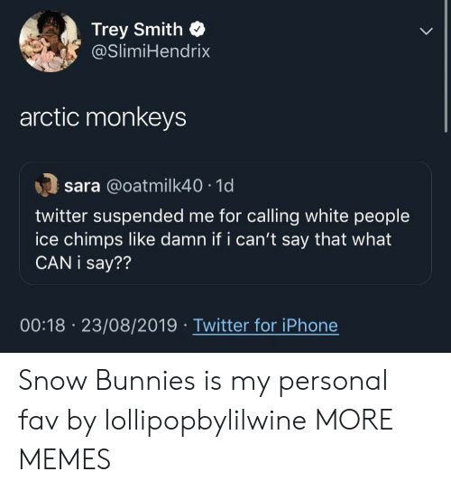 fav: Trey Smith  @SlimiHendrix  arctic monkeys  sara @oatmilk40 1d  twitter suspended me for calling white people  ice chimps like damn if i can't say that what  CAN i say??  00:18 23/08/2019 Twitter for iPhone Snow Bunnies is my personal fav by lollipopbylilwine MORE MEMES