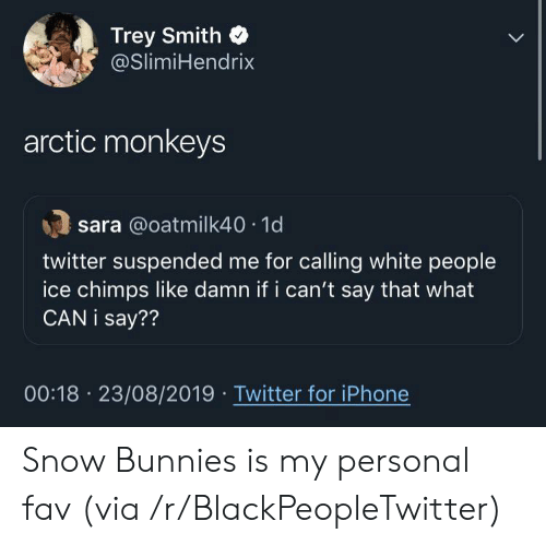 fav: Trey Smith  @SlimiHendrix  arctic monkeys  sara @oatmilk40 1d  twitter suspended me for calling white people  ice chimps like damn if i can't say that what  CAN i say??  00:18 23/08/2019 Twitter for iPhone Snow Bunnies is my personal fav (via /r/BlackPeopleTwitter)