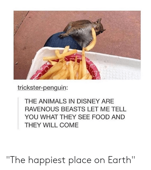 """ravenous: trickster-penguin:  THE ANIMALS IN DISNEY ARE  RAVENOUS BEASTS LET ME TELL  YOU WHAT THEY SEE FOOD AND  THEY WILL COME """"The happiest place on Earth"""""""
