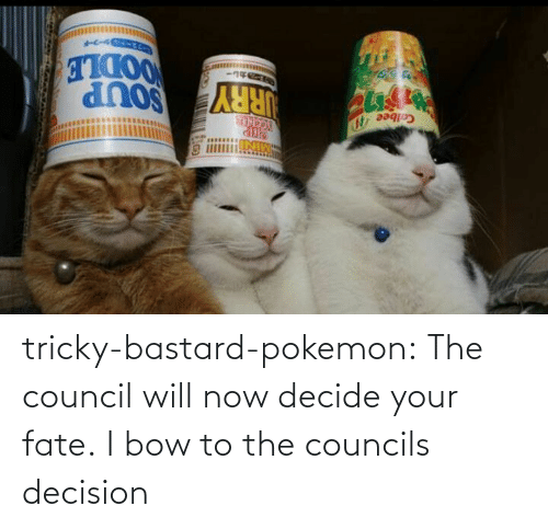 Fate: tricky-bastard-pokemon:  The council will now decide your fate.   I bow to the councils decision