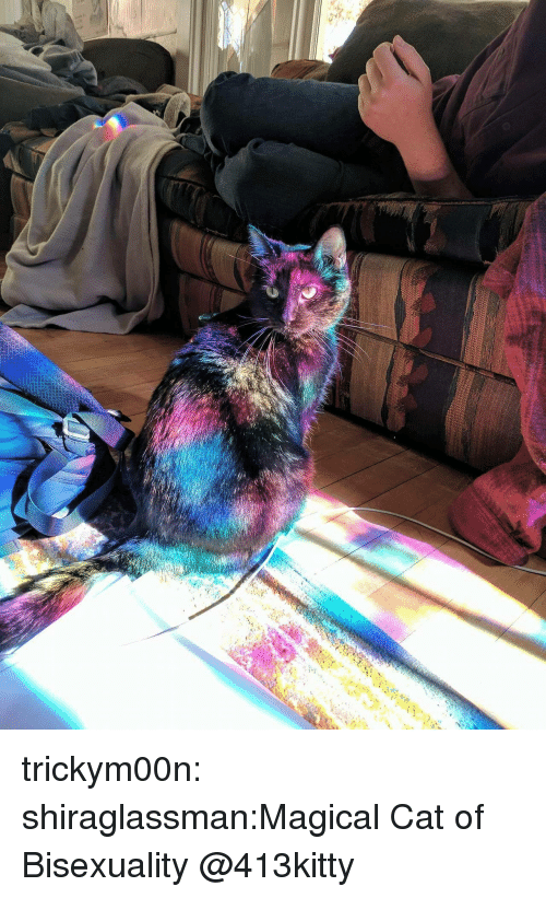 Bisexuality: trickym00n:  shiraglassman:Magical Cat of Bisexuality  @413kitty