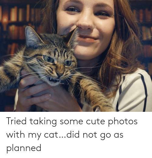 photos: Tried taking some cute photos with my cat…did not go as planned