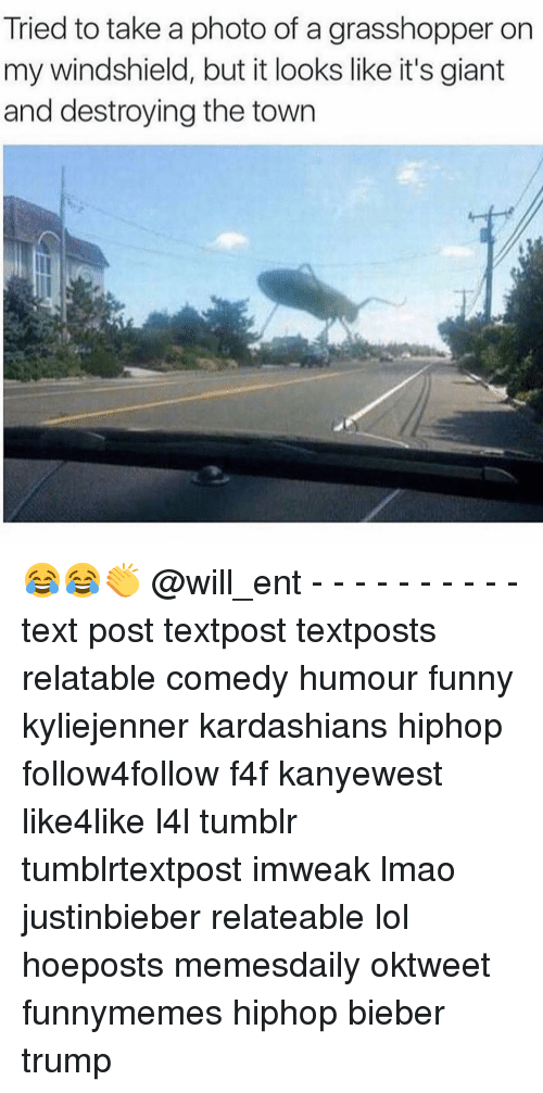 Funny, Kardashians, and Lmao: Tried to take a photo of a grasshopper on  my windshield, but it looks like it's giant  and destroying the town 😂😂👏 @will_ent - - - - - - - - - - text post textpost textposts relatable comedy humour funny kyliejenner kardashians hiphop follow4follow f4f kanyewest like4like l4l tumblr tumblrtextpost imweak lmao justinbieber relateable lol hoeposts memesdaily oktweet funnymemes hiphop bieber trump