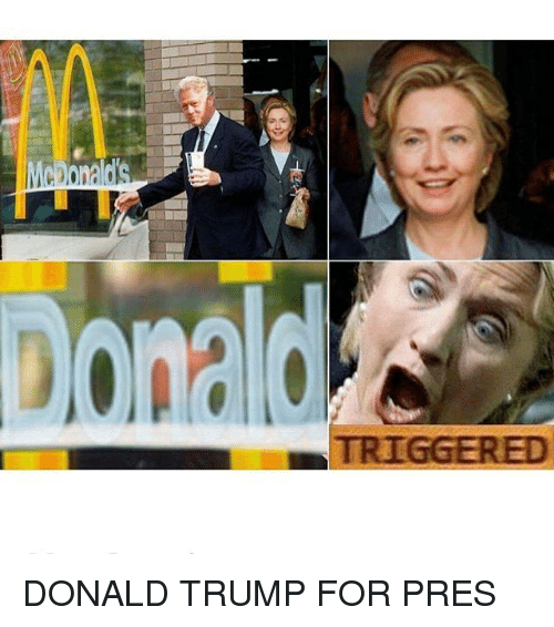 Donald Trump, Trump, and Dank Memes: TRIGGERED DONALD TRUMP FOR PRES