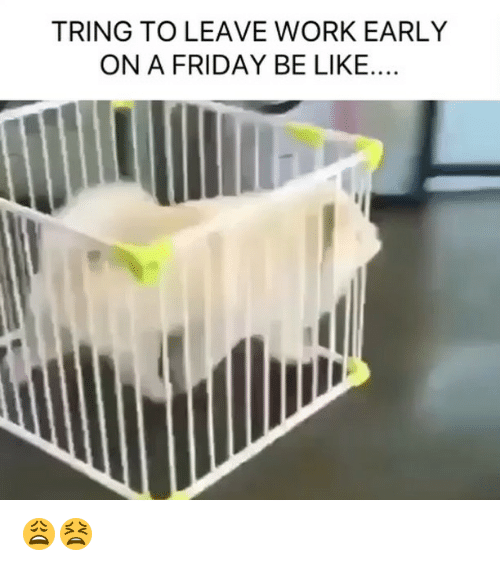 Be Like, Friday, and Memes: TRING TO LEAVE WORK EARLY  ON A FRIDAY BE LIKE.... 😩😫