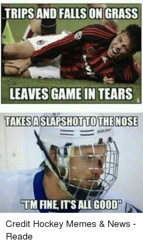 Memes News: TRIPS AND FALLS ON GRASS  LEAVES GAME IN TEARS  TANESASLAPSHOTTO THE NOSE  TM FINE,IT SALL GOOD Credit Hockey Memes & News