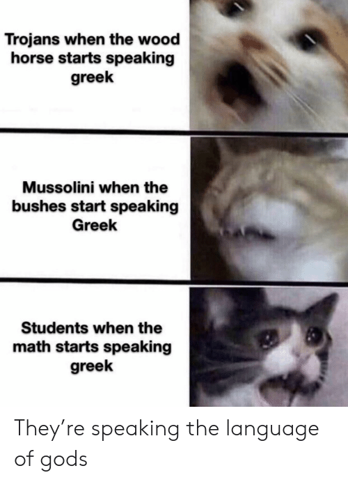 mussolini: Trojans when the wood  horse starts speaking  greek  Mussolini when the  bushes start speaking  Greek  Students when the  math starts speaking  greek They're speaking the language of gods