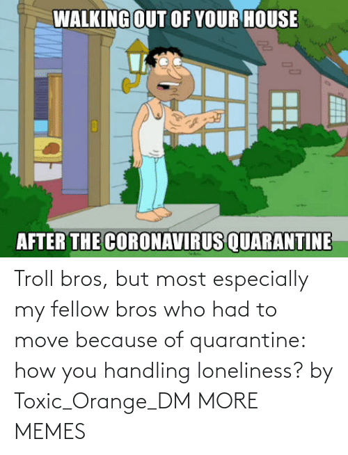 Fellow: Troll bros, but most especially my fellow bros who had to move because of quarantine: how you handling loneliness? by Toxic_Orange_DM MORE MEMES