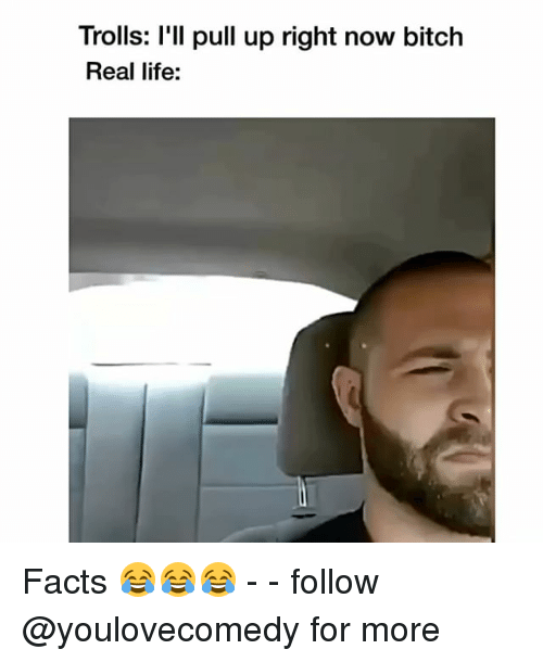 Bitch, Facts, and Life: Trolls: l'll pull up right now bitch  Real life: Facts 😂😂😂 - - follow @youlovecomedy for more