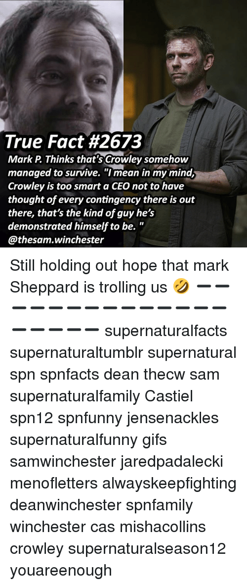 "Memes, Trolling, and True: True Fact #2673  Mark P Thinks that's Crowley somehow  managed to survive. ""I mean in my mind,  Crowley is too smart a CEO not to have  thought of every contingency there is out  there, that's the kind of guy he's  demonstrated himself to be.  @thesam.winchester Still holding out hope that mark Sheppard is trolling us 🤣 ➖➖➖➖➖➖➖➖➖➖➖➖➖➖➖➖➖➖➖ supernaturalfacts supernaturaltumblr supernatural spn spnfacts dean thecw sam supernaturalfamily Castiel spn12 spnfunny jensenackles supernaturalfunny gifs samwinchester jaredpadalecki menofletters alwayskeepfighting deanwinchester spnfamily winchester cas mishacollins crowley supernaturalseason12 youareenough"