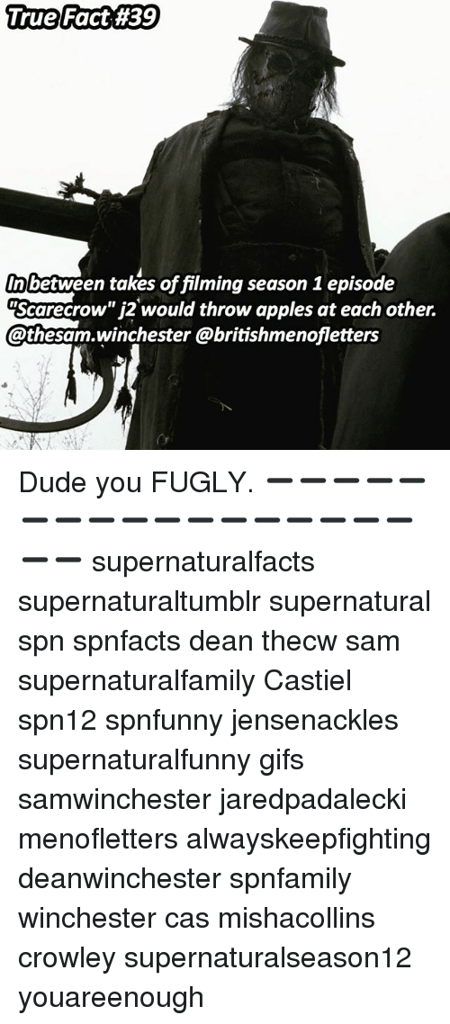 "fugly: True Fact 4139  1 rue Fact #39  In between takes of filming season 1 episode  ""Scarecrow"" j2 would throw apples at each other.  athesam.winchester @britishmenofletters  Or Dude you FUGLY. ➖➖➖➖➖➖➖➖➖➖➖➖➖➖➖➖➖➖➖ supernaturalfacts supernaturaltumblr supernatural spn spnfacts dean thecw sam supernaturalfamily Castiel spn12 spnfunny jensenackles supernaturalfunny gifs samwinchester jaredpadalecki menofletters alwayskeepfighting deanwinchester spnfamily winchester cas mishacollins crowley supernaturalseason12 youareenough"