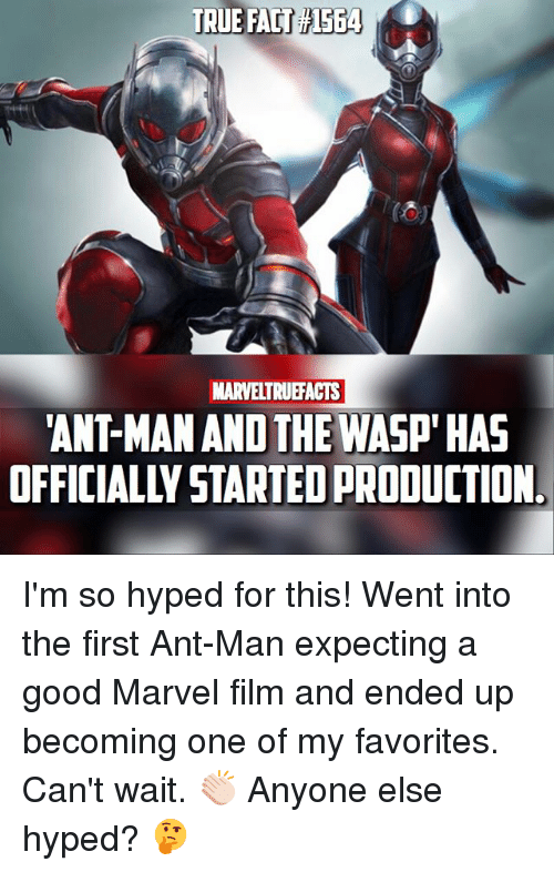 Memes, True, and Good: TRUE FACT1564  MARVELTRUEFACTS  ANT-MAN AND THE WASP' HAS  OFFICIALLY STARTED PRODUCTION I'm so hyped for this! Went into the first Ant-Man expecting a good Marvel film and ended up becoming one of my favorites. Can't wait. 👏🏻 Anyone else hyped? 🤔