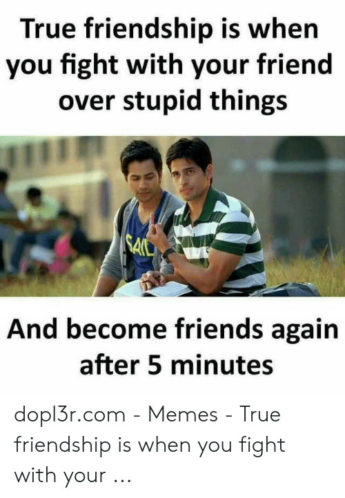 True Friends Meme: True friendship is when  you fight with your friend  over stupid things  A0t  And become friends again  after 5 minutes dopl3r.com - Memes - True friendship is when you fight with your ...